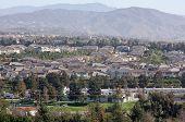 Contemporary Suburban Neighborhoods