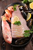 assorted fresh fish poster