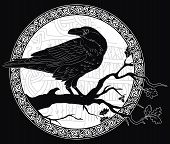 Black Crow Sitting On A Branch Of An Oak Tree, And Scandinavian Runes, Carved Into Stone, Isolated O poster