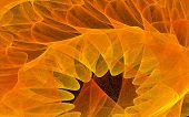 stock photo of funeral home  - Fractal generated image of fiery petal shapes - JPG