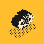 Isometric Gene Editing Icon Isolated On Yellow Background. Genetic Engineering. Dna Researching, Res poster