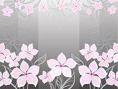 Grey Flower Background