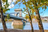 Amazing Szechenyi Chain Bridge Over The Danube River In Budapest, Hungary Taken With Autumn Trees By poster