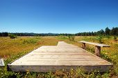 Observation Deck At Mima Mounds