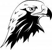 纹身.鹰头