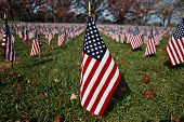 American Flag In A Sea Of Flags On A Bright Sunny Day. The U.s. Flag, Is The National Flag Of The Un poster