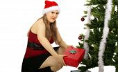 Mrs Santa Bring Gift