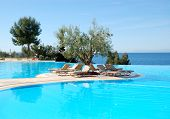 Infinity Swimming Pool With Olive Tree In The Middle At The Modern Luxury Hotel, Halkidiki, Greece