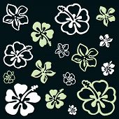 pic of hawaiian flower  - Squared flower pattern colored in white and green - JPG