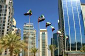 View Of Dubai Buildings With Uae Flags. United Arab Emirates Flags Waving On Blue Sky Background. In poster