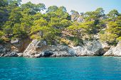 Beautiful Rocky Coast Of The Southern Coast Of Turkey. Coniferous Trees On The Rocks And Clear Blue  poster