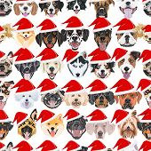 Illustration Of Dogs Seamless Pattern Merry Christmas poster