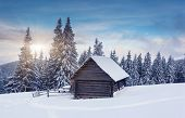 Beautiful winter landscape with snow covered trees. Dramatic sky. Carpathian, Ukraine, Europe. Beauty world.