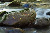 Water cascading over large river rocks in Smoky Mountains