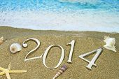 image of cockle shell  - New year 2014 on the beach - JPG