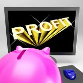 Profit Screen Shows Success And Market Growth