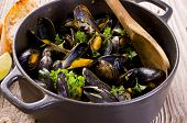 stock photo of crustaceans  - mussels stew in white wine - JPG