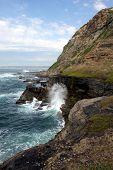 Cliffs At The Tasman Seaside In Australia