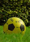 Yellow Garden Football