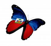Haiti Flag Butterfly Flying, Isolated On White Background