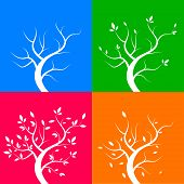 Four season trees, vector illustration