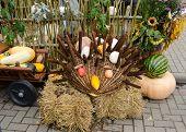 Hedgehog handmade Outono colheita Goodie