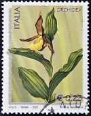 A stamp printed in Italy shows an orchidea