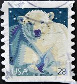 A stamp printed in USA shows Polar Bear (Ursus maritimus)