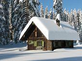 White - Cottage
