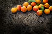 picture of apricot  - Fruit garden concept - JPG