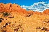 Red Desert And Rocks