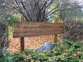 Rustic Sign In Woods
