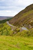 Country Road In  Wicklow Mountains, Ireland