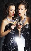 Couple Of Cheerful Women Toasting At Party With Wineglasses Celebrating