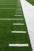 Yard Lines of a Football Field Vertical