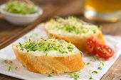 foto of baguette  - Baguette slices spread with cream cheese and sprinkled with alfalfa sprouts on sandwich paper (Selective Focus Focus on the front of the cream cheese and sprouts on the first baguette slice)