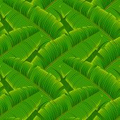 Tropical banana leaves seamless pattern