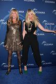 LOS ANGELES - OCT 30:  Carly Simon, Natasha Bedingfield at the Oceana's Partners Awards Gala 2013 at Beverly Wilshire Hotel on October 30, 2013 in Beverly Hills, CA