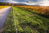pic of cade  - Late afternoon on a quiet country road in Cade - JPG