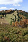 Autumn in Javorniky Mountains