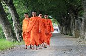 young monks walking morning alms in An Giang, Vietnam