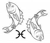 Zodiac Horoscope Pisces vector