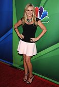 LOS ANGELES - AUG 27:  Tamra Barney arrives to NBC All Star Summer TCA Party 2013  on July 27, 2013