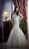 picture of lace-curtain  - Young beautiful luxurious woman in wedding dress posing in classic scenery - JPG