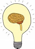Idea Bulb With Brain