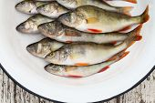 River Perch In A White Basin On The Wooden Stool