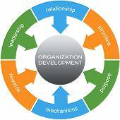 Organization Development Word Circles Concept