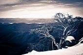 Winter In The High Country