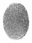 stock photo of fingerprint  - Vector illustration of fingerprint isolated on transparent background - JPG