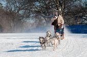 2014 Subaru Dogsled Loppet - Sidney Johnsen